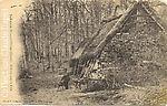 Mon arrière-grand père au travail dans le Bois des Loges