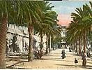 TOULON : place de la Liberté, allée des Palmiers