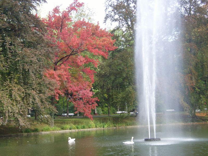 Parc de l`Orangerie