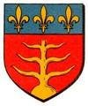 Blason et armoiries de Montauban