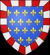Blason et armoiries de Neuvy-le-Roi